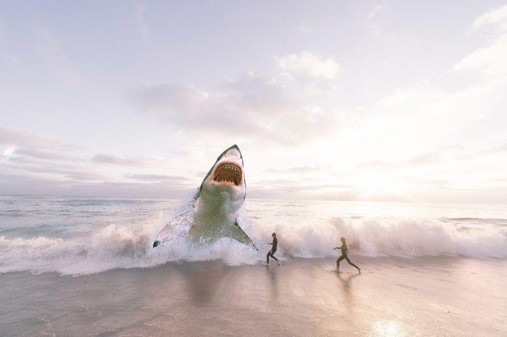 diventa uno squalo del tuo settore con una stampante 3D per soli acciai