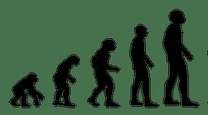 legge di rogers - evoluzione - adattamento